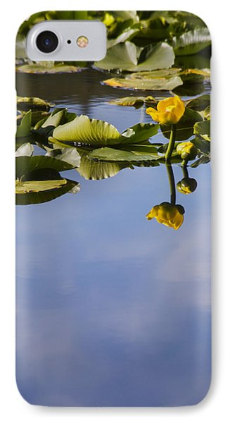 Water Lily Daydreams IPhone Case by Morris  McClung