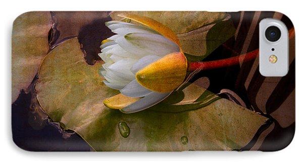 Water Lily IPhone Case by Debra and Dave Vanderlaan