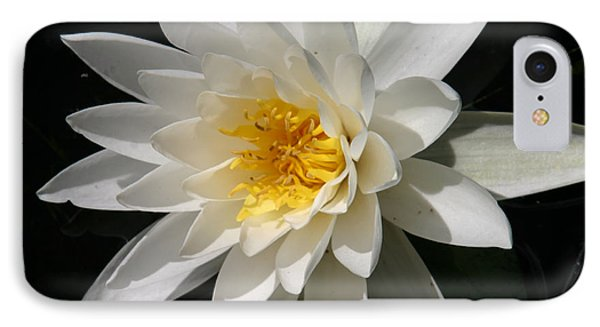 IPhone Case featuring the photograph Water Lily  by Denyse Duhaime