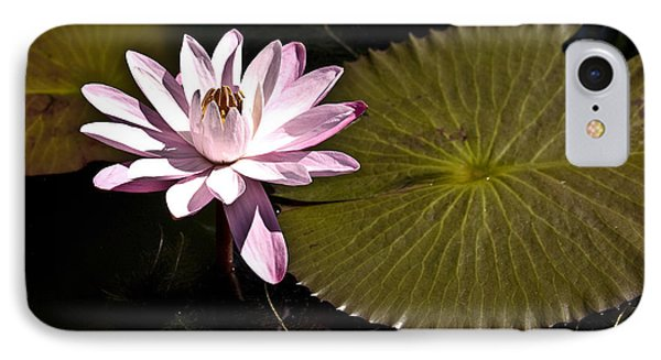Water Lily Phone Case by Heiko Koehrer-Wagner