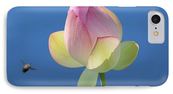 Water Lily IPhone Case by Jewels Blake Hamrick