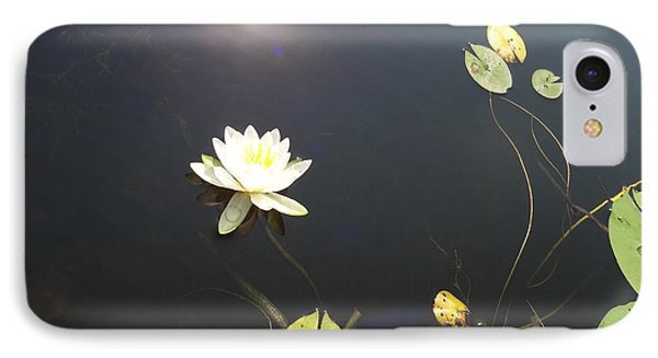 Water Lily IPhone Case by Laurel Best
