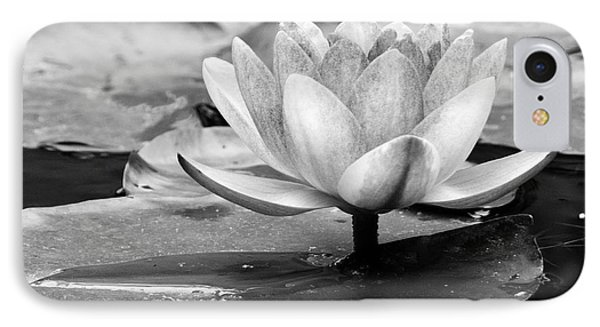 Water Lily IPhone Case by Michelle Joseph-Long