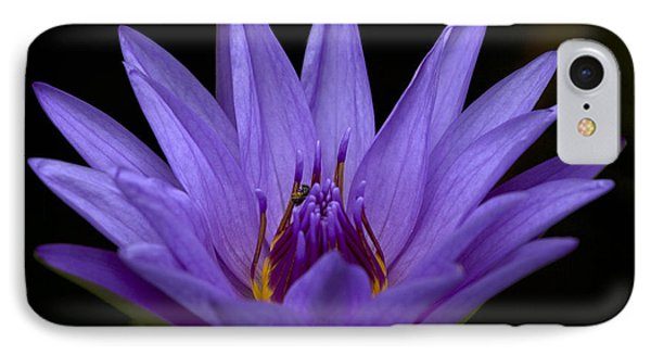 IPhone Case featuring the photograph Water Lily Photo by Meg Rousher
