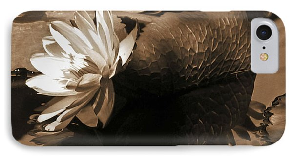 Water Lily Pond Sepia Toned Photo IPhone Case by Carol F Austin