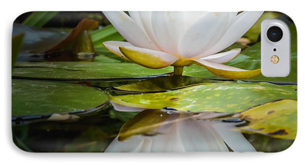 Water-lily Reflection IPhone Case