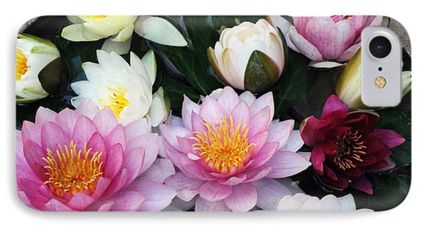 IPhone Case featuring the photograph Water Lily Series -2  by Haleh Mahbod