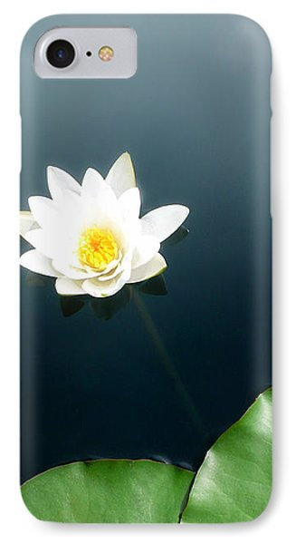 Water Lily Study 2 IPhone Case by Ron Regalado