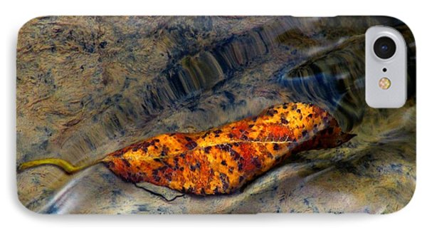 Water Logged IPhone Case by Janice Westerberg