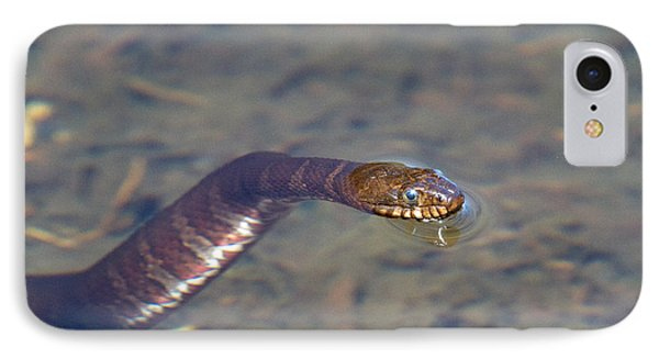 Water Snake Phone Case by Karol Livote