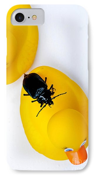 Waterbug On Rubber Duck - Aerial View Phone Case by Amy Cicconi