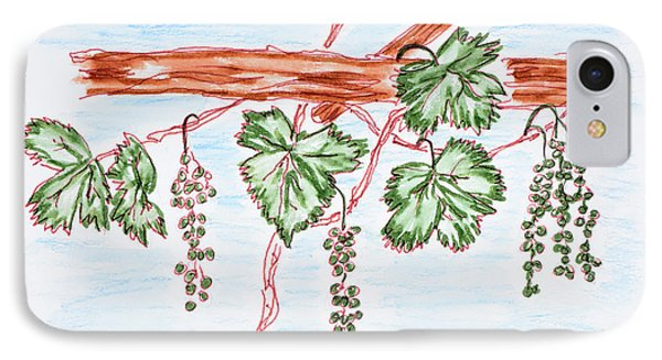 Watercolor Of Vines With Grapes, France IPhone Case