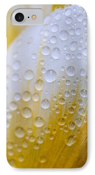 Waterdrops On Tulip IPhone Case by Robert Camp
