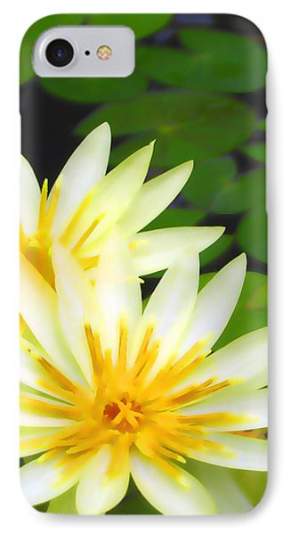 Waterlilies In Pond IPhone Case