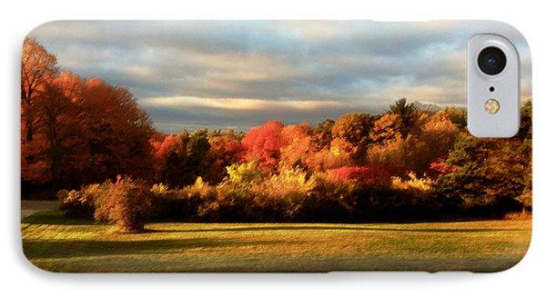 Waupaca Sunset IPhone Case by David Blank