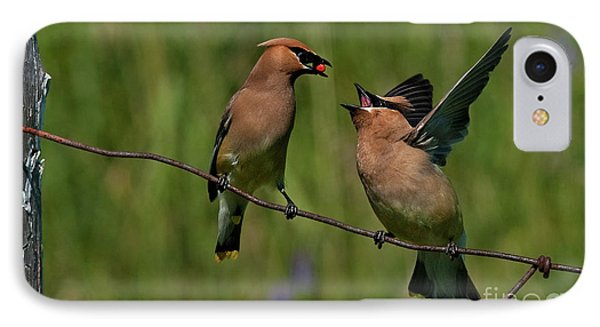 Waxwing Love.. Phone Case by Nina Stavlund