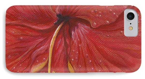 We Have Had Rain IPhone Case by Carol Wisniewski