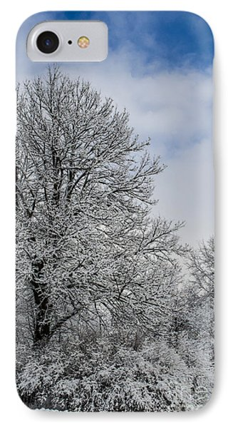 Wealth Of Snow After Nemo IPhone Case by Deborah Smolinske