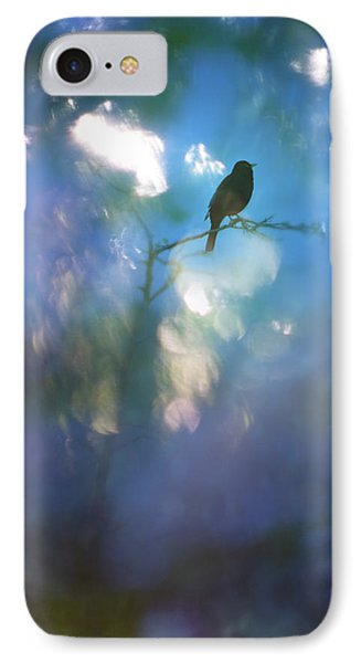 Weather To Fly  IPhone Case by Richard Piper