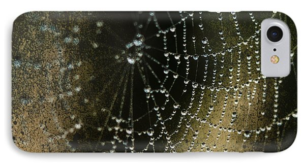Web In The Mist IPhone Case