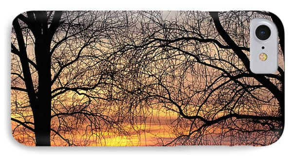 Web Of Branches IPhone Case by David Warrington