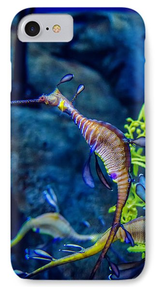 Weedy Seadragon IPhone Case
