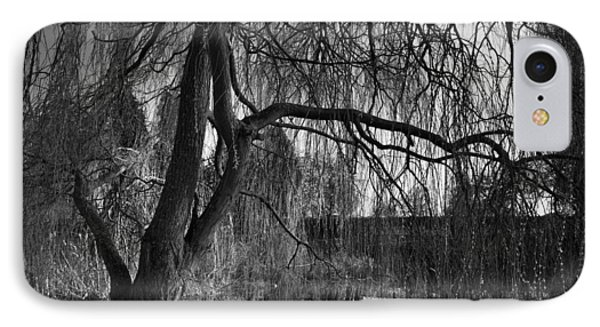 Weeping Willow Tree Phone Case by Ian Barber