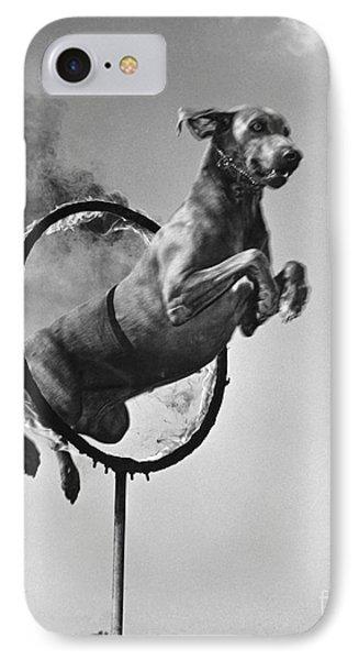 Weimaraner Jumping Through A Ring IPhone Case