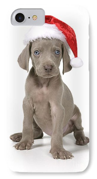Weimaraner With Christmas Hat IPhone Case