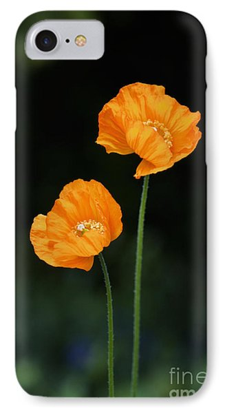 Welsh Poppy Flowers IPhone Case by Tim Gainey