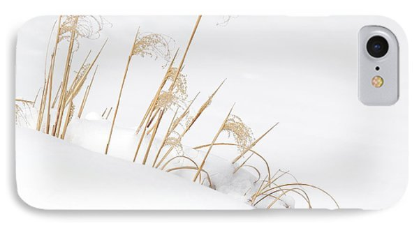 West Falls Winter Grass IPhone Case by Don Nieman