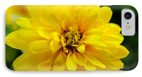 West Virginia Marigold IPhone Case by Melissa Petrey