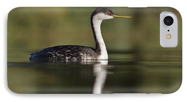 Western Grebe IPhone Case
