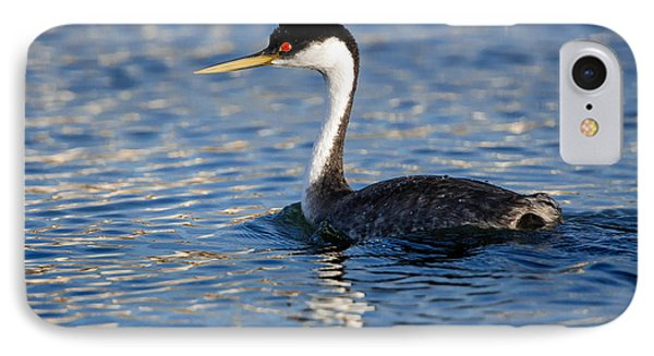 IPhone Case featuring the photograph Western Grebe by Jack Bell