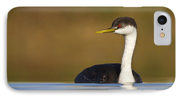 IPhone Case featuring the photograph Western Grebe On The Lake by Bryan Keil