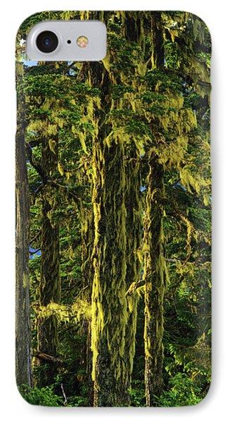Western Hemlock And Lichen, Temperate IPhone Case