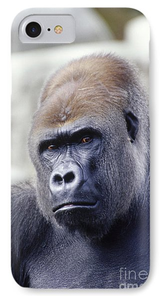 Western Lowland Gorilla IPhone 7 Case by Gregory G. Dimijian