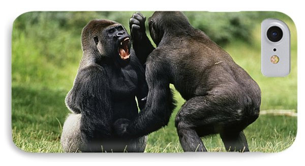 Western Lowland Gorilla Males Fighting IPhone 7 Case by Konrad Wothe