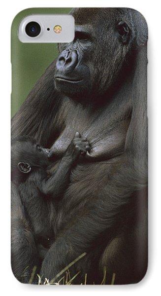 Western Lowland Gorilla Nursing Infant Photograph By