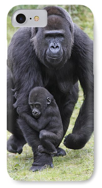 Western Lowland Gorilla Walking IPhone 7 Case by Duncan Usher