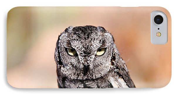 Western Screech Owl IPhone Case by Bonnie Fink