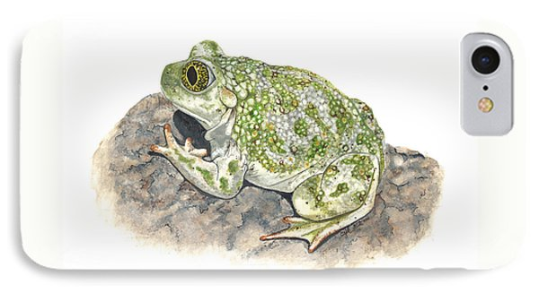 Western Spadefoot IPhone Case by Cindy Hitchcock