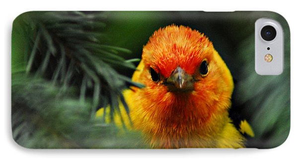 IPhone Case featuring the photograph Western Tanager by Sam Rosen