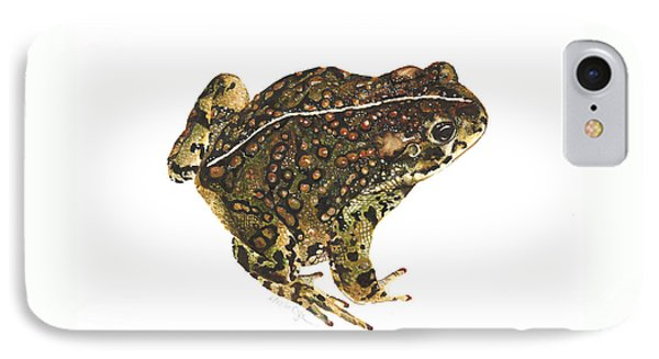 Western Toad IPhone Case by Cindy Hitchcock