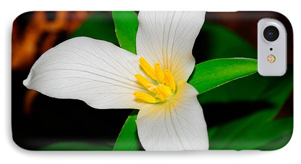 Western White Trillium IPhone Case by Bonnie Fink
