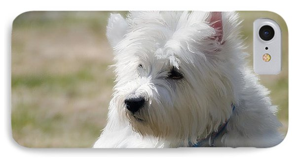Westie In The Spring IPhone Case