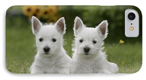 Westie Puppies Phone Case by Rolf Kopfle
