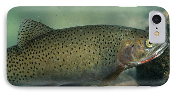 Westslope Cutthroat Trout IPhone Case