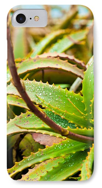 After The Rain IPhone Case by Melinda Ledsome