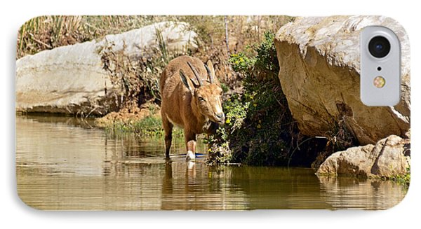 IPhone Case featuring the photograph Wet And Delicious Meal by Arik Baltinester